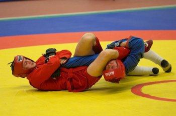 Армянские самбисты завоевали пять медалей на чемпионате мира в Болгарии